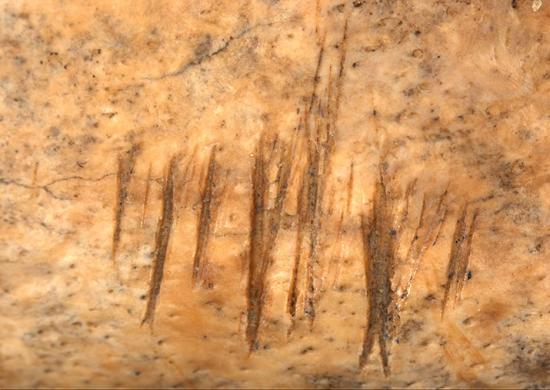 jamestown-cannibals-scratches-715.jpg