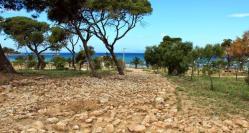 Kavouri beach1