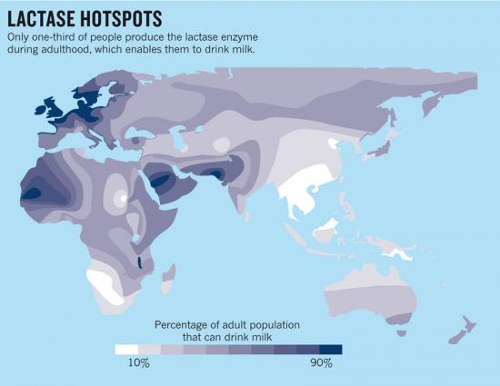lactase-hotspots2.jpg