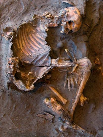 libyan-stone-age-skeleton.jpg