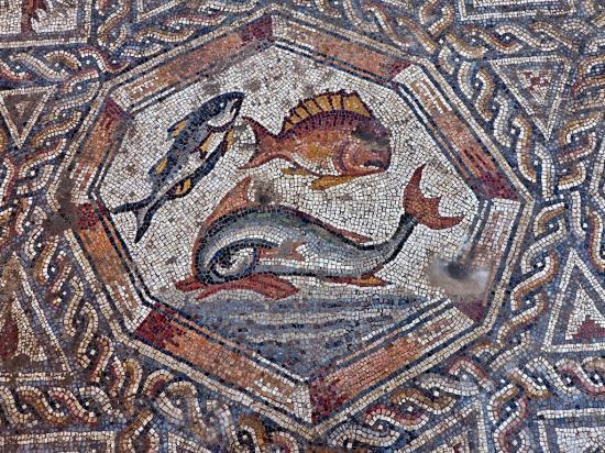 Lod mosaic assafperetz iaa 4 1024x768