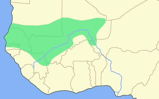 Mali empire blank