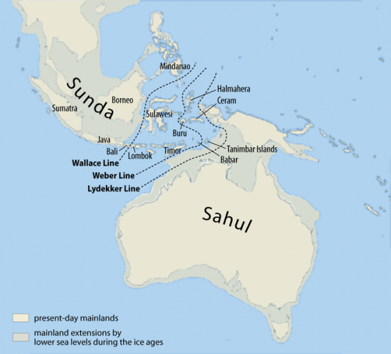 map-of-sunda-and-sahul.png