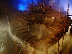 maryrose-conservation1-1.jpg