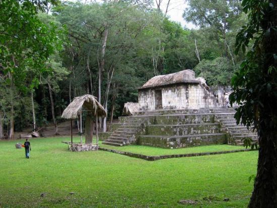 Maya1 2