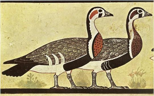 Meidum geese 1 542x338