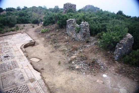 mosaic-panorama-120917.jpeg