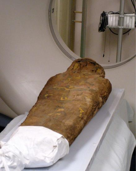 mummy-and-ct-scanner.jpg