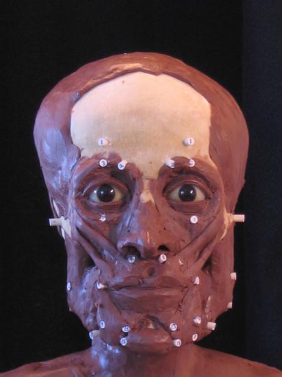 mummy-reconstructions-4.jpg