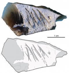 Neandertal gravait aussi minuscules outils exact1024x768 p