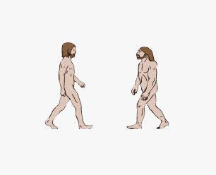 neanderthal-main1.jpg