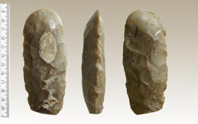 neolithicman.jpg