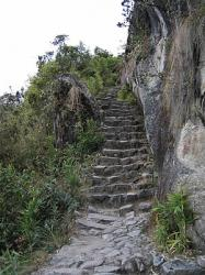 new-section-of-inca-trail-discovered-in-peru.jpg
