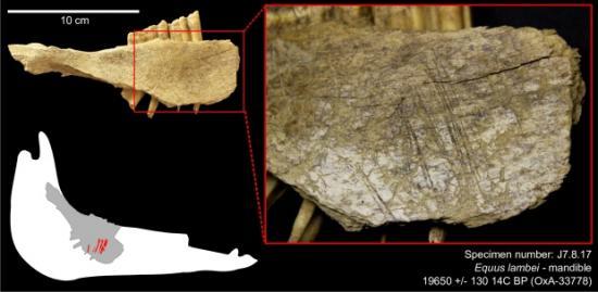 North bluefish caves archeology 2