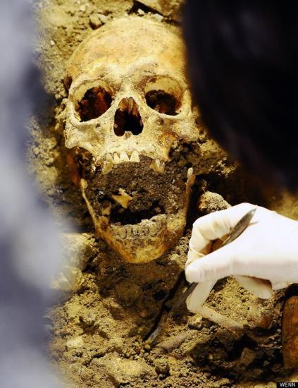 o-skull-570.jpg