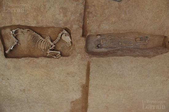 On voit tres ici le cheval positionne en vis a vis avec une tombe humaine photo pole archeologie preventive de metz metropole