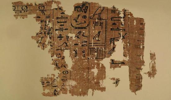Papyri on display