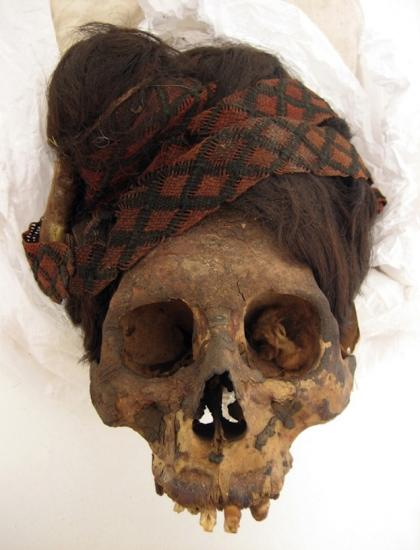 Paracas necropolis burial 24