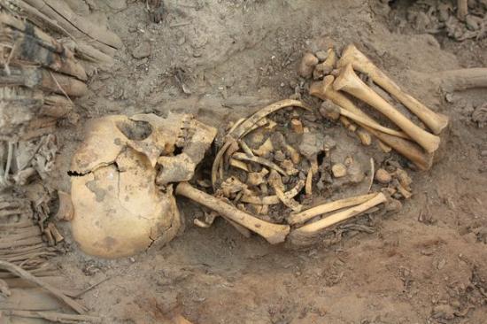 peru-tomb-80-individuals-found-squelette-54287-600x450.jpg