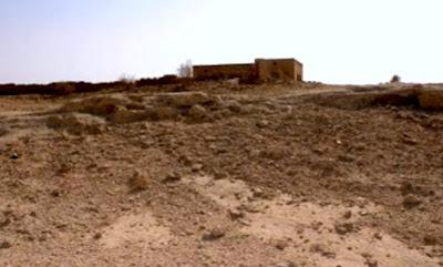 qatar-03.jpg