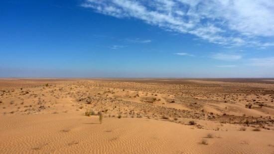 Sahara 600x338