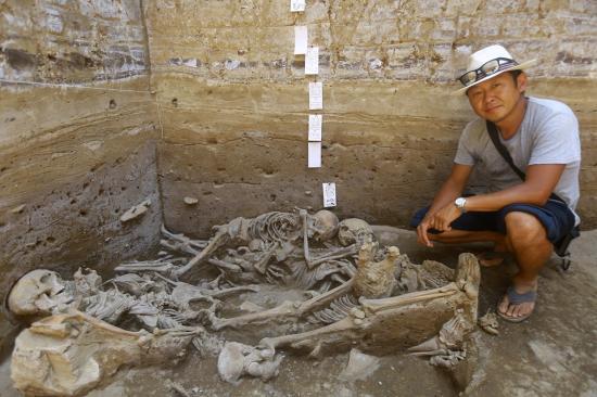 Sican human sacrifice skeletons grave peru 6