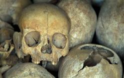 skull-2385505b.jpg
