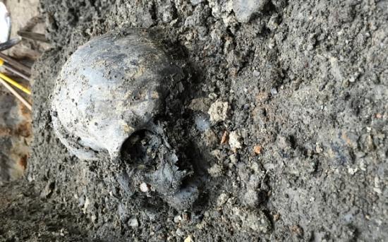 Skull 3321640b