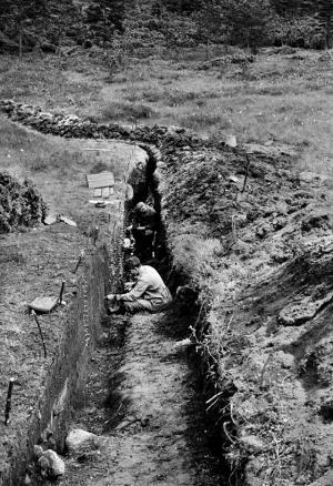 sosteli-1954-none.jpg