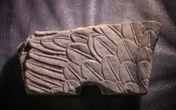 Sphinx wing