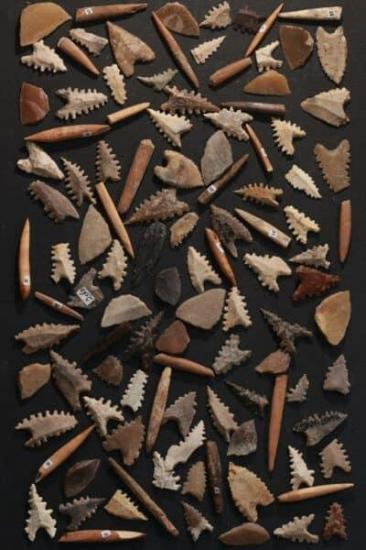 Toalean stone arrowheads maros points and backed microliths and bone tools credit basran burhan min 400x600