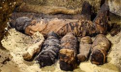 Tomb found containing 50 mummies 1081836