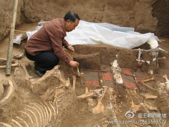 Tomb qin shi huangs grandmother has been discovered xi 1
