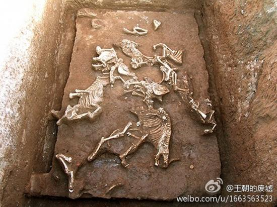 Tomb qin shi huangs grandmother has been discovered xi 2