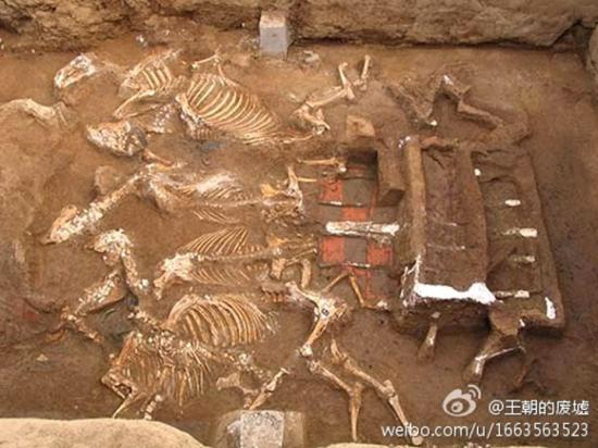 Tomb qin shi huangs grandmother has been discovered xi 3
